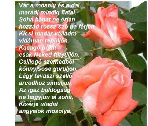 angyalok_mosolya.jpg
